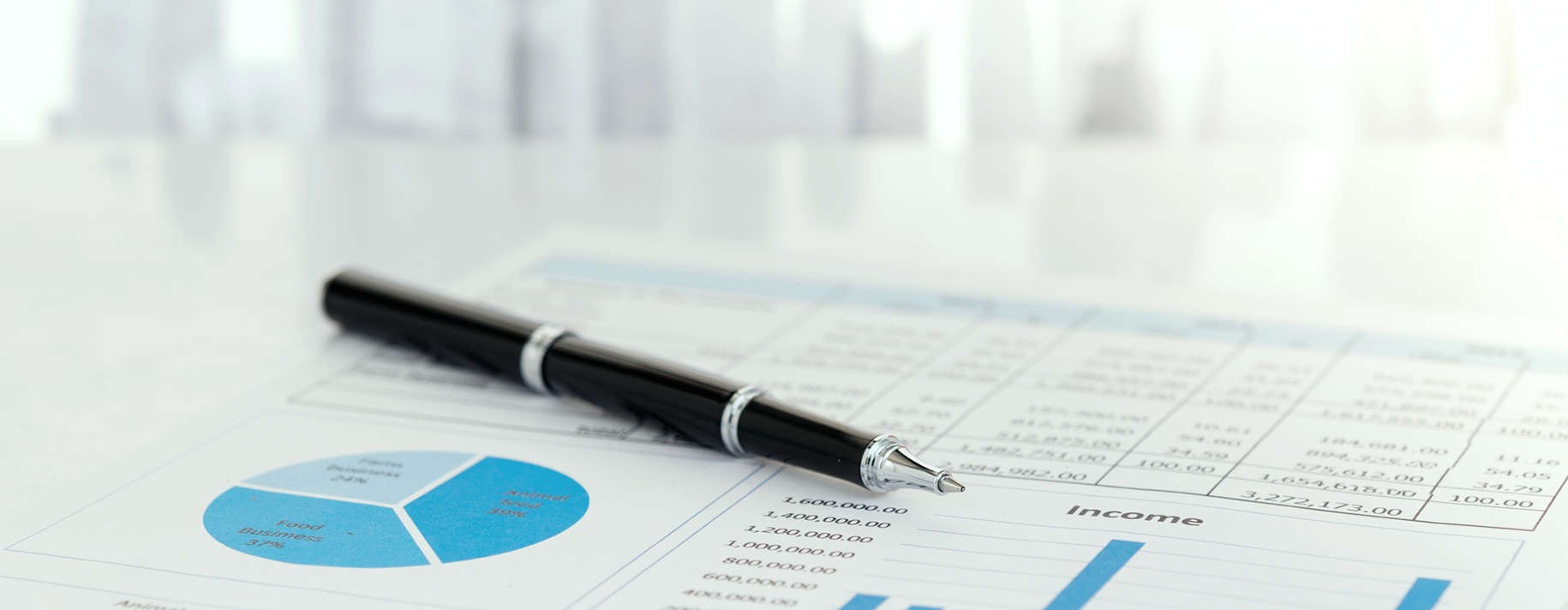 Pen on financial report. Concept of Financial, Data Analysis, Investment Planning, Business Analytics.